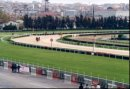 Turkey, Istanbul racecourse(1999)